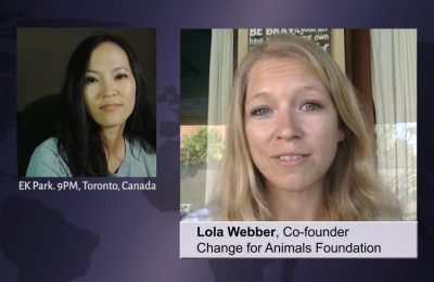Lola Webber on the Korean Dog Meat Trade