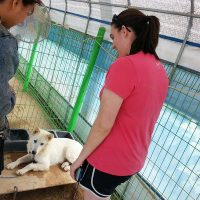 Shannon meeting Swayze at the shelter