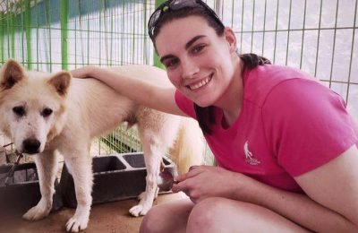 Meet the Happiest Chicken Farm Dog