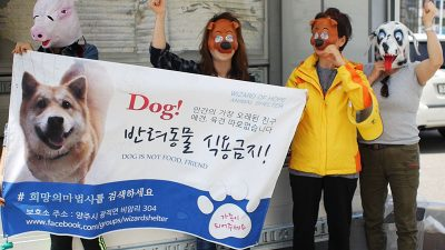 Banner Against the Dog Meat Trade