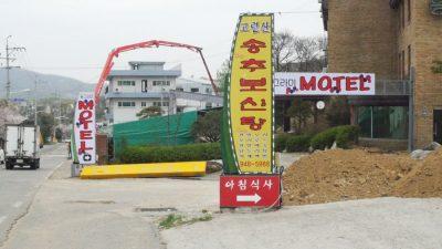 Boshintang (dog meat soup) Restaurant in Korea