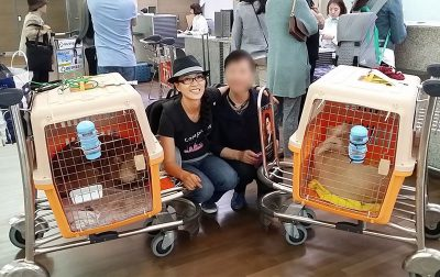 EK with Rescue Dogs at the Airport