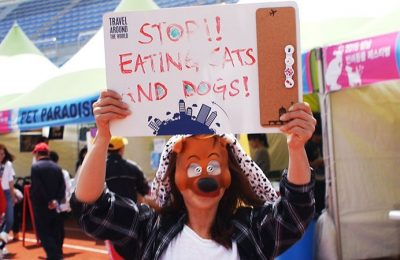 Protest to End the Dog and Cat Meat Trade