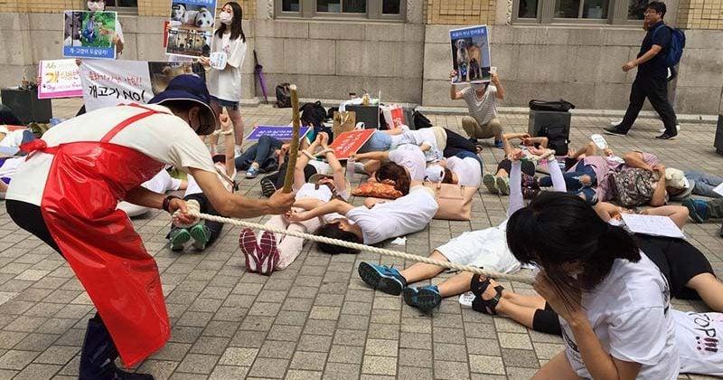 Multi-City Protest a Huge Success