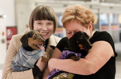 Korean Puppy Mill Rescues Arrive in Toronto