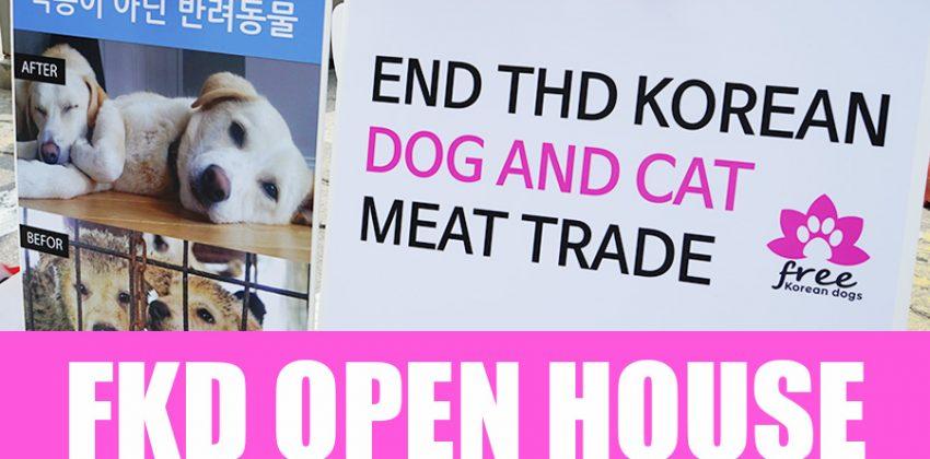 Free Korean Dogs OPEN HOUSE