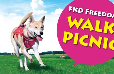 FKD Freedom Walk and Picnic
