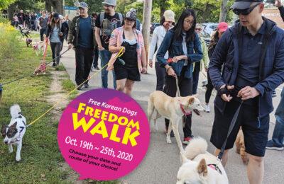 Freedom Walk 2020!